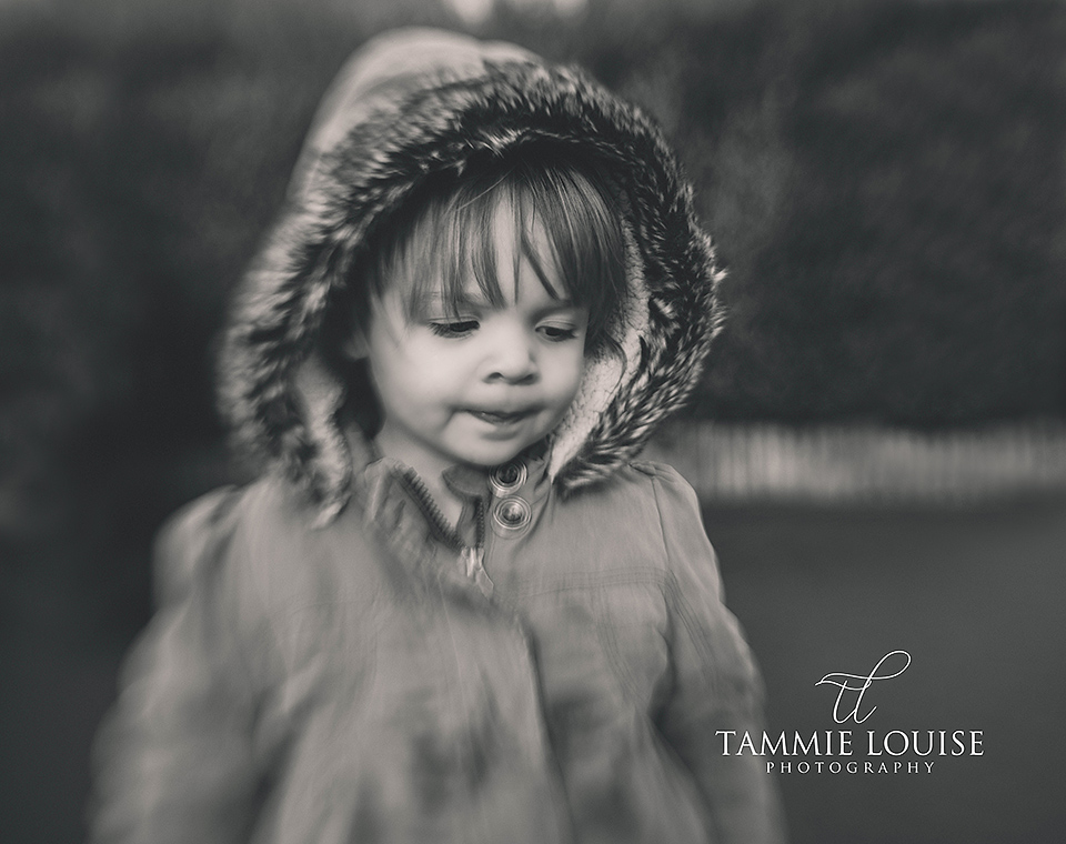 tammie louise photography
